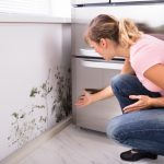 How to Avoid Kitchen & Bathroom Mold